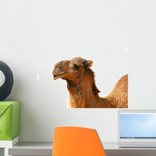 Camel Wall Decal