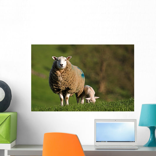 Ewe and Lamb Wall Mural