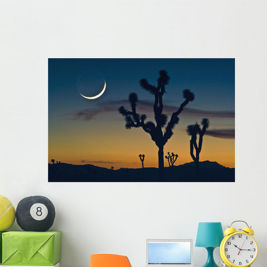 Sunset In Joshua Tree National Park Wall Mural