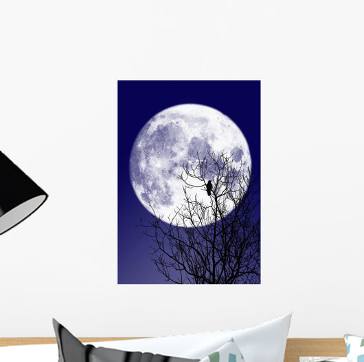 Full moon Wall Mural