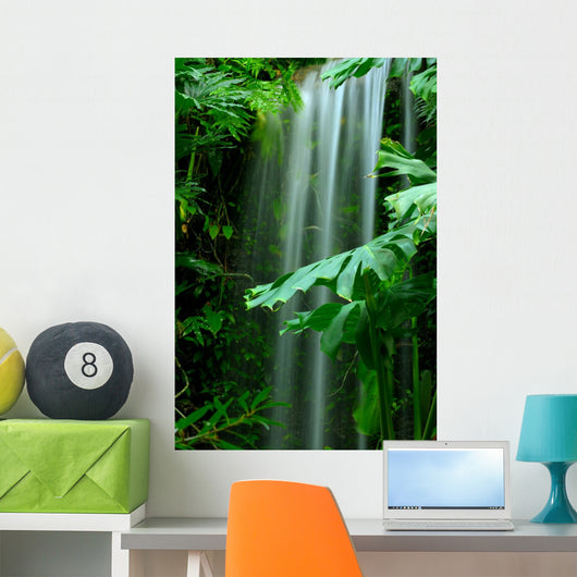 Waterfall Rainforest