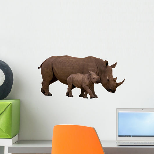 Rhino With Calf Isolated on White Wall Decal