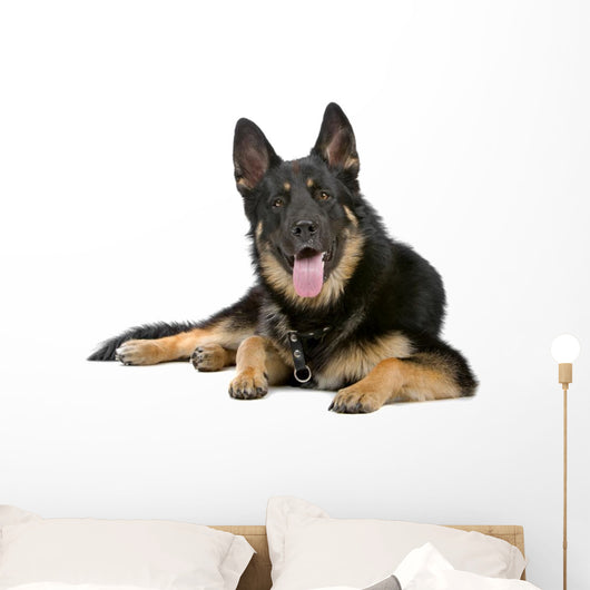 German Shepherd Dog Sticking Out Tongue Wall Decal