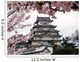 Japanese Castle During Cherry Blossom Wall Mural