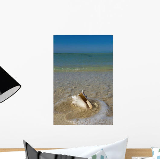 USA, Florida, Florida Keys, Conch shell on sandy beach Wall Mural