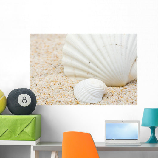 Sea Shells Beach Wall Mural