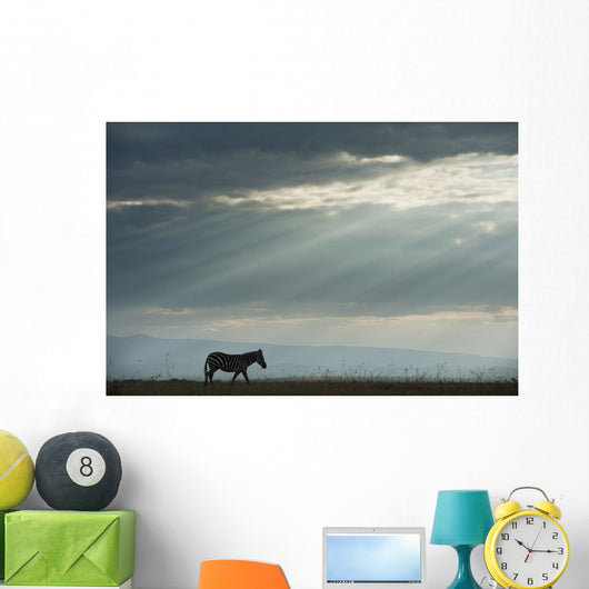 Kenya, Side view of zebra in Ol Pejeta Conservancy Wall Mural