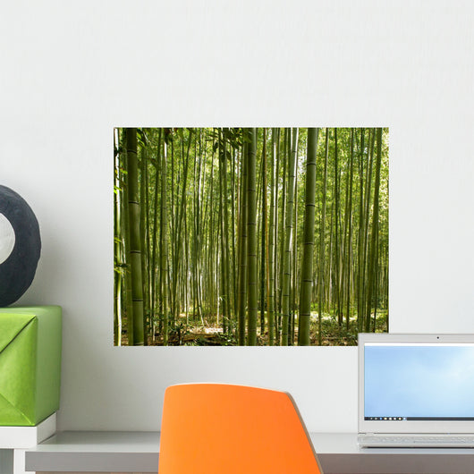 A beautiful bamboo grove in Kyoto, Japan Wall Mural