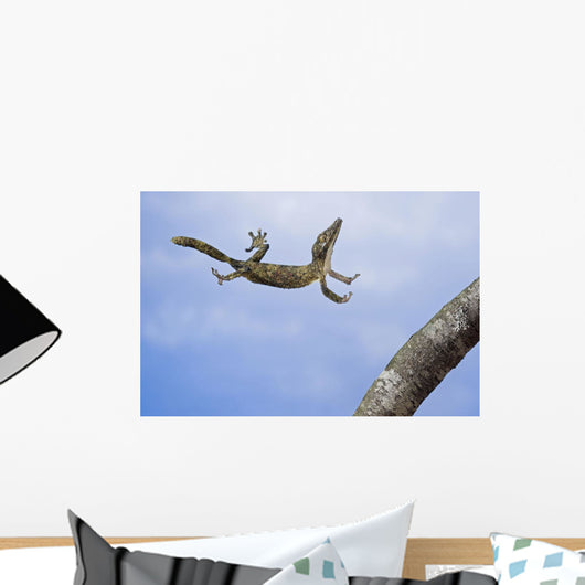 Henkel's leaf-tailed gecko in mid leap Wall Mural