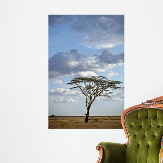 Tree and Landscape Serengeti Wall Mural