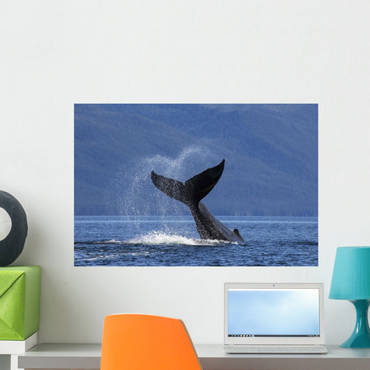 On A Sunny Morning A Humpback Whale Lays Wall Mural