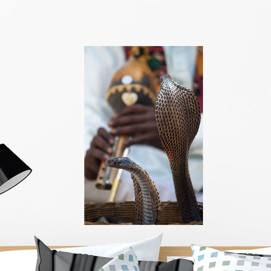 Snake Dancing To Flute Music Wall Mural