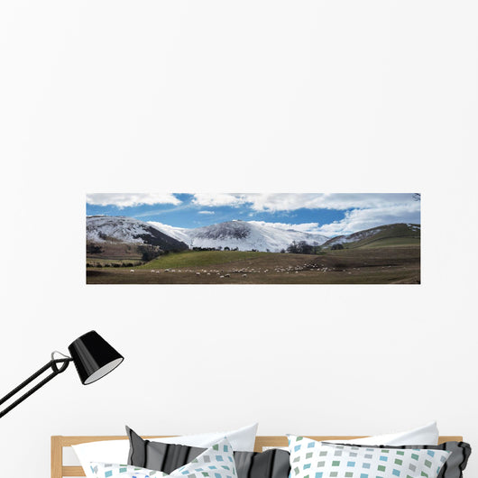 Sheep grazing Wall Mural