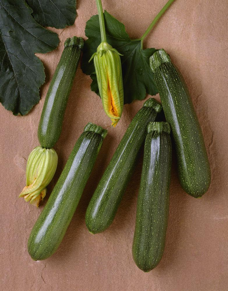 Agriculture - Green zucchini on a stone surface Wall Mural