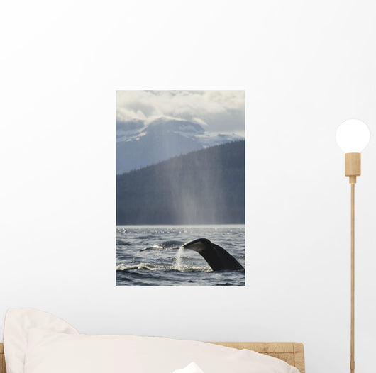 Humpback Whale Rises out Wall Mural