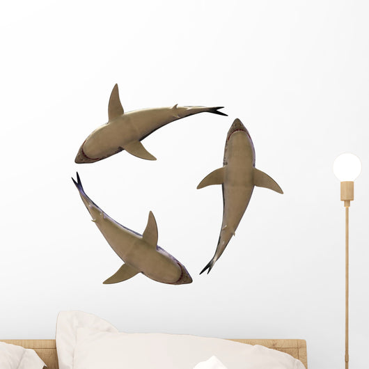 great white sharks Wall Decal