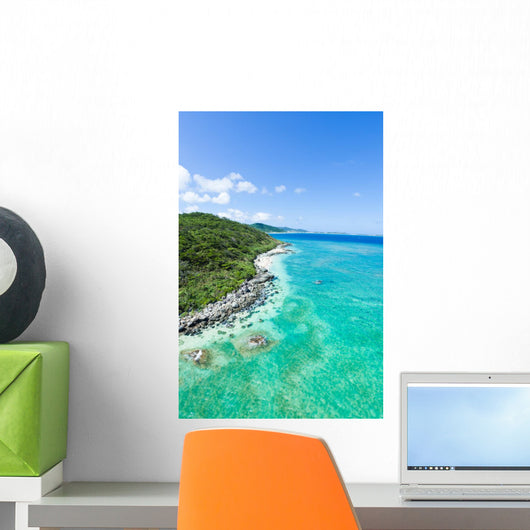Aerial view of tropical island, clear blue water and coral reef Wall Mural