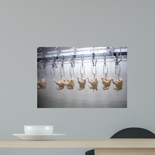 Poultry Processing Meat Food Industry Wall Mural