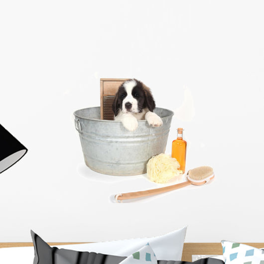 Saint Bernard Puppy in a Washtub Wall Decal