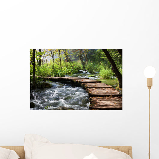 Forest Stream Scenery Wall Mural