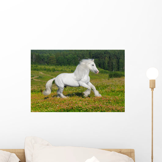Galloping White Horse Wall Mural