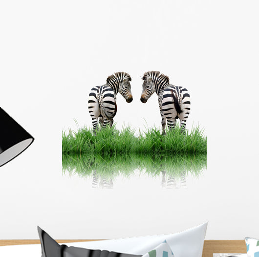 Zebra With Green Grass Isolated Wall Decal