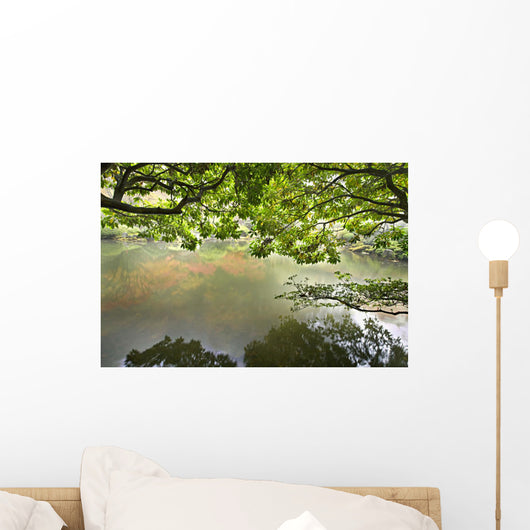 Reflection Pond Japanese Garden Wall Mural