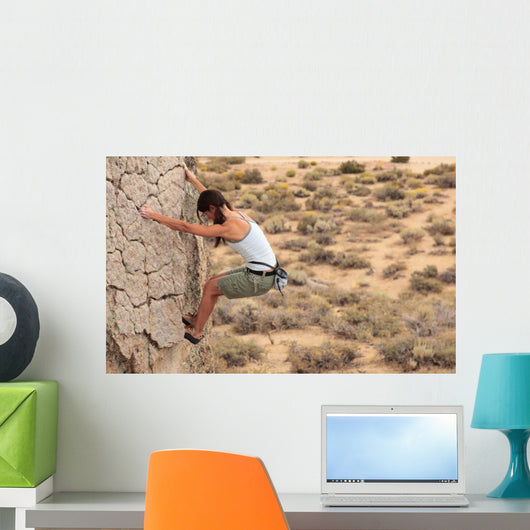 Climbing Wall Decal