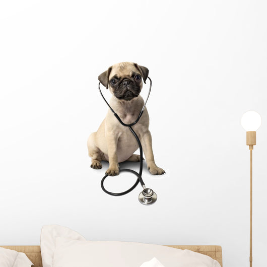 Dog With Stethoscope Wall Decal