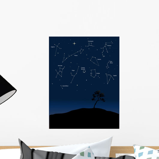 constellations 1 Wall Mural