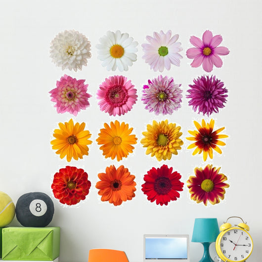 Collection Daisies Wall Decal Sticker Set