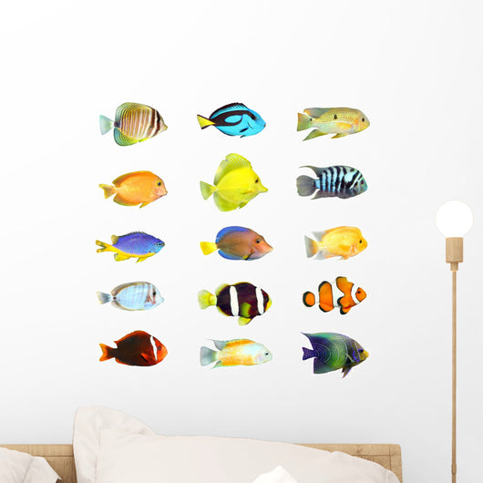 Fifteen Tropical Fish Wall Decal