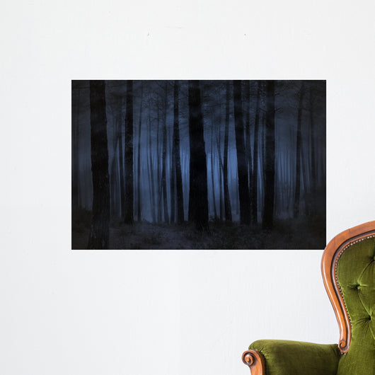 Foggy Forest Wall Mural