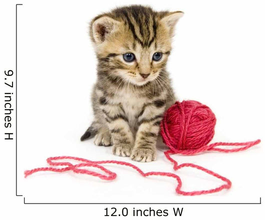 Kitten with Red Ball Wall Decal