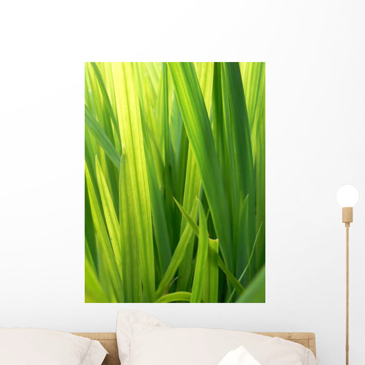 Grass Wall Decal Design 1