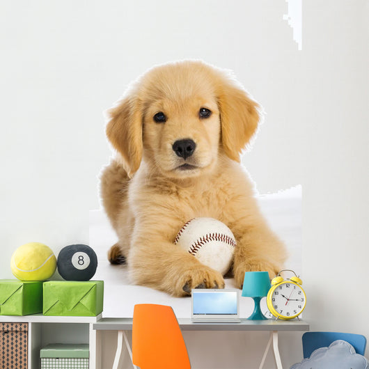Golden Retriever Puppy with Wall Decal
