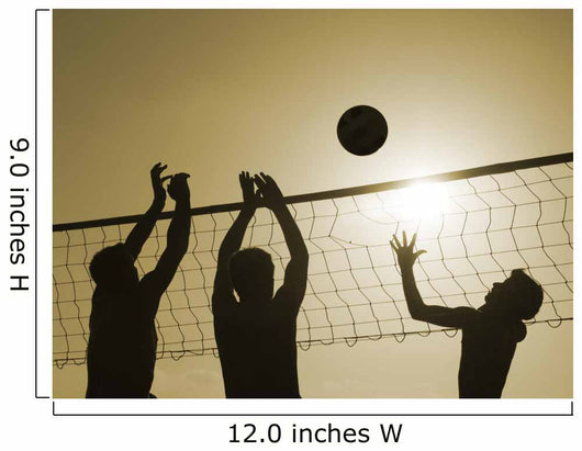 Volley-ball Wall Decal