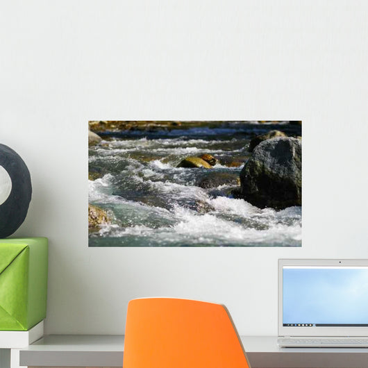 Wild River and Rocks Wall Decal