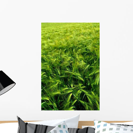 Agricultural Field Green Wall Decal