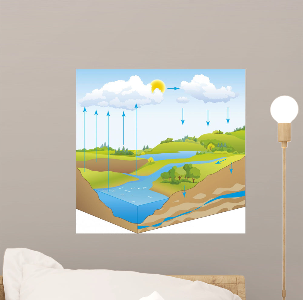 Schematic Natural Water Cycle Wall Mural