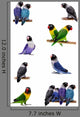 Set Lovebirds White Agapornis Wall Stickers Wall Decal