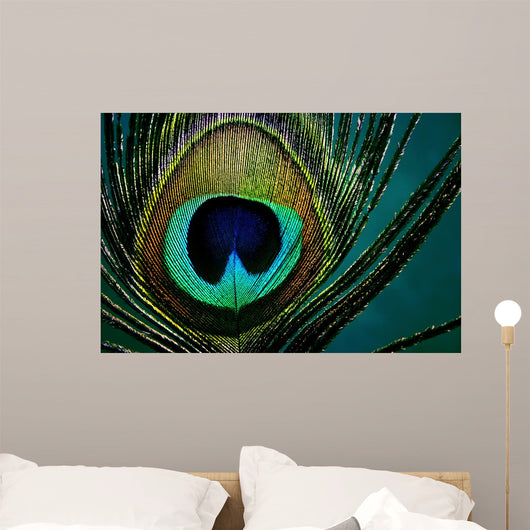 Eye Peacock Feather Wall Decal