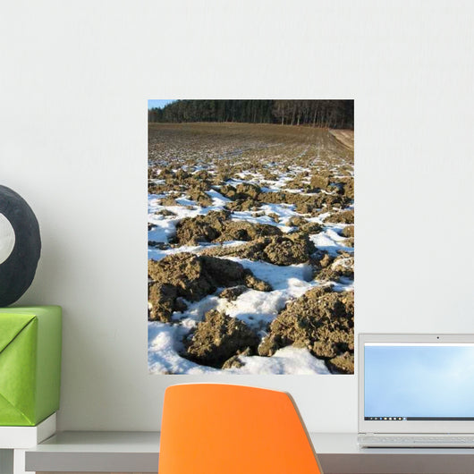 Acker im Winter Wall Decal