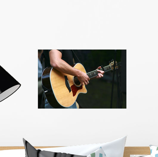 Musician With Guitar Wall Mural Wallmonkeys Com
