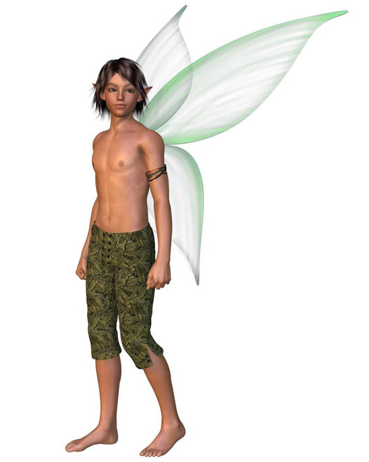 Fairy Boy With Green Wall Decal