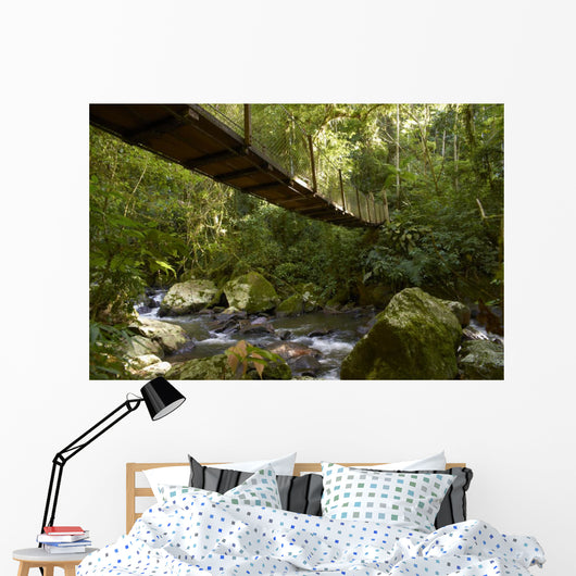 Suspension bridge in the rain forest Wall Mural