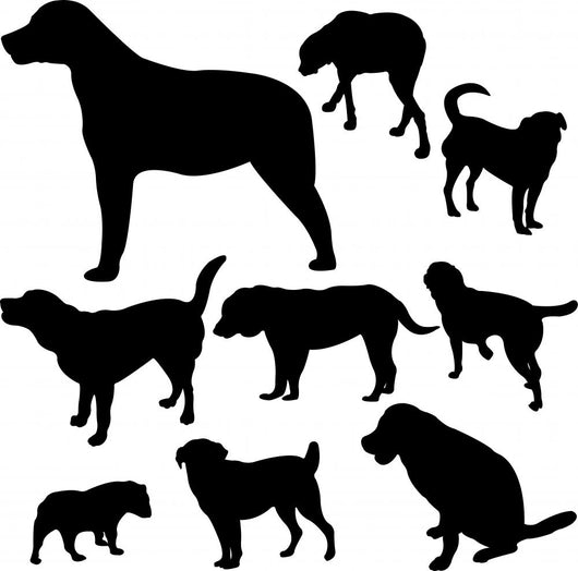 dogs - vector Wall Decal