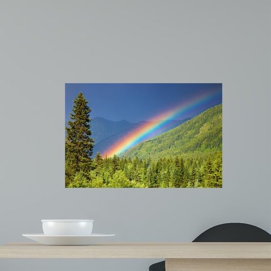 Rainbow over forest Wall Mural