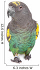 Meyer Parrot Wall Decal