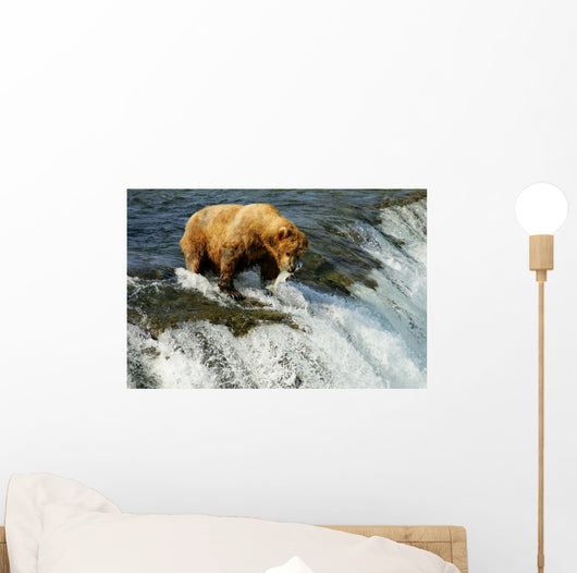 Grizzly bear Wall Mural